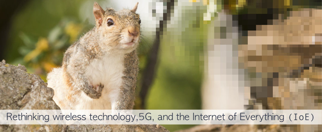 """Summary Document Of Problems With5G and """"Small Cells"""""""